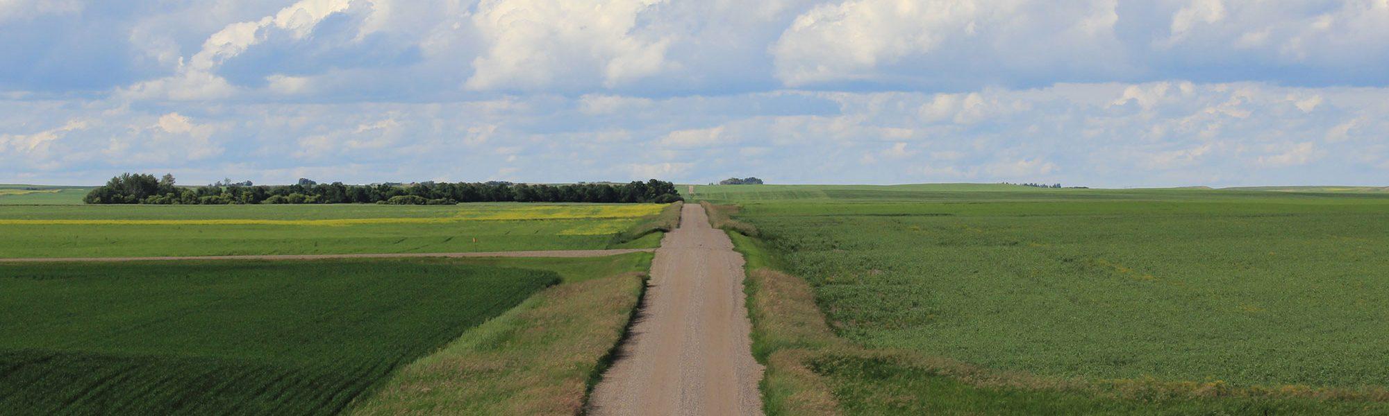 317-roads